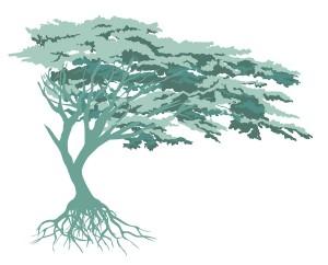 Tree-vector